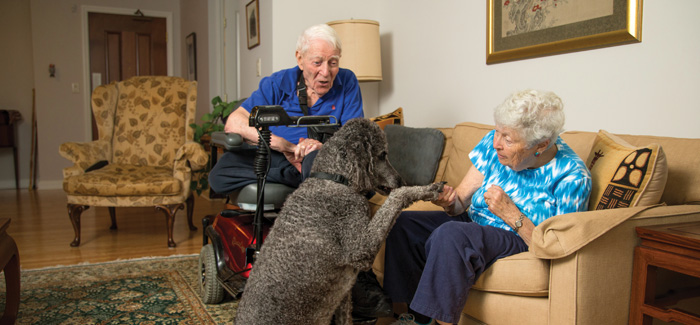 A senior man and woman in their apartment with a large black poodle