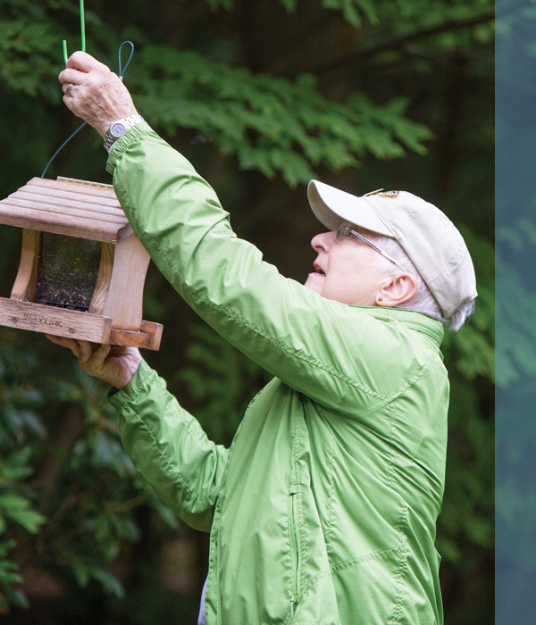 A senior man hanging a bird feeder