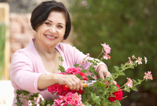 A middle-aged woman in a pink sweater smiles as she prunes a rose bush